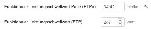 Der FTPa kann anhand des FTP automatisch berechnet werden, wenn ein Zauberstab angezeigt wird.